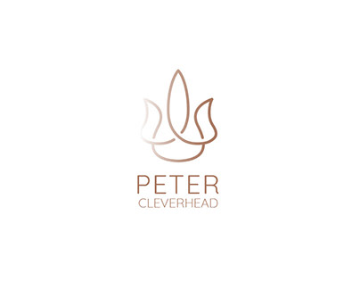Peter Cleverhead. Marketing agency branding
