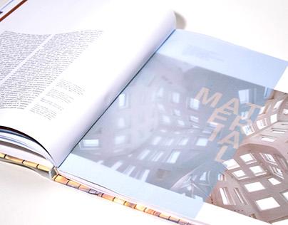 Vain Imaginations: book proposal