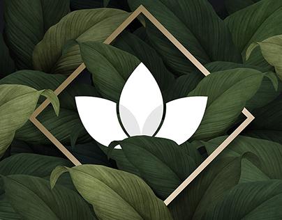 Hiedra y Bambú - Branding