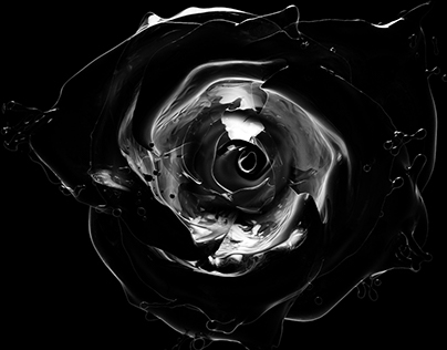 Rose variations - CGI