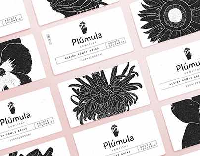 Plúmula / Branding