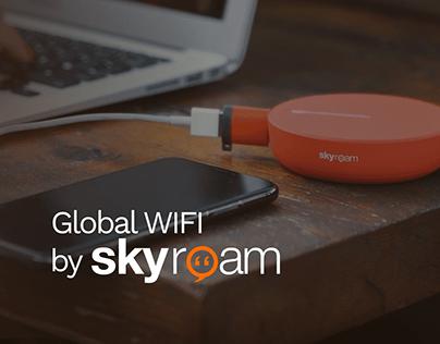 SkyRoam Russia | Website