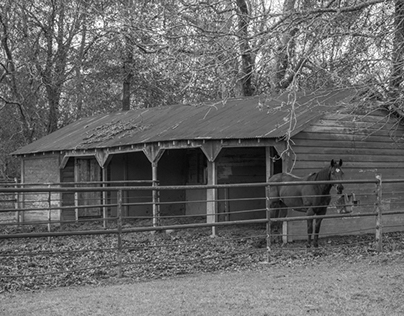 Old Gardner Family Ranch which my family used to own