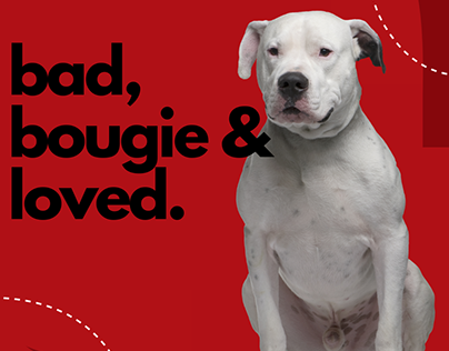 Bad and Bougie Pets   Branding