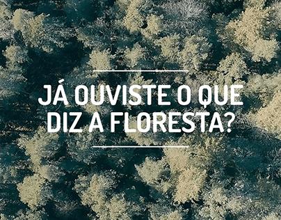 Já ouviste o que a floresta disse?