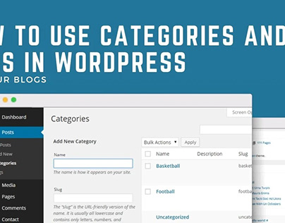 How To Use Categories And Tags In WordPress For Your