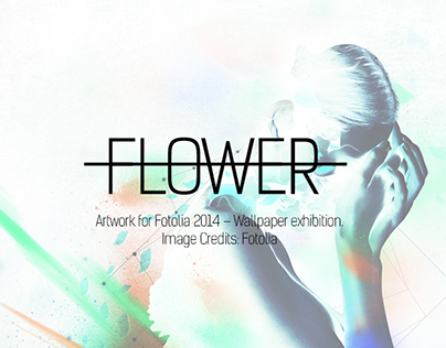 Flowers | Ten Collection Contest