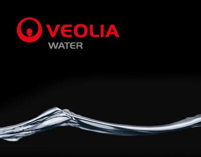 Veolia Infographic 2010