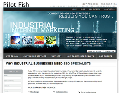 Pilot Fish Web Design & SEO