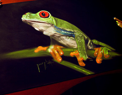 Frog on pastels
