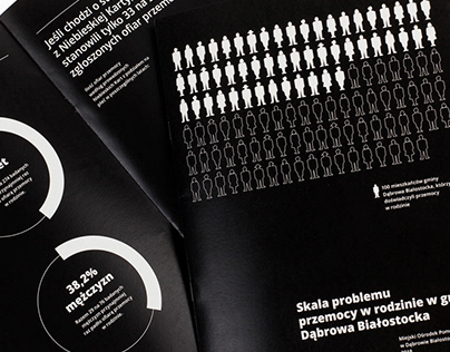 MA project | SCALE OF DOMESTIC VIOLENCE research&report