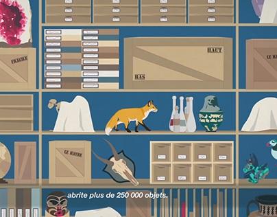 """""""L'Histoire du Muséum d'Histoire Naturelle du Havre"""""""