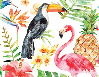 Watercolor tropical set