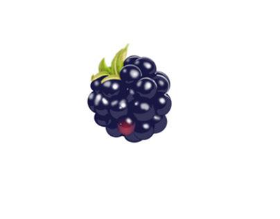 Blackberry - Digital Art