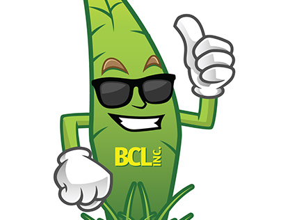 STL Organic Lawn Care Branding