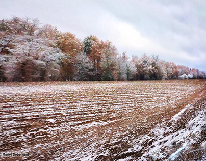 De l'automne à l'hiver / At the autumn to winter