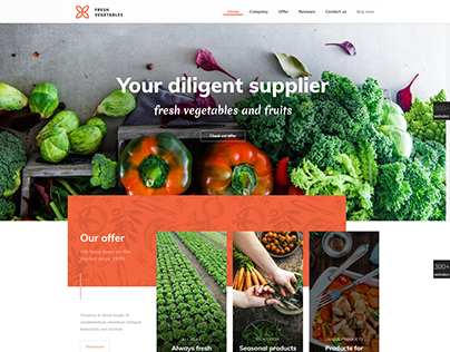 VEGETABLES - WordPress Food Website Template Design.