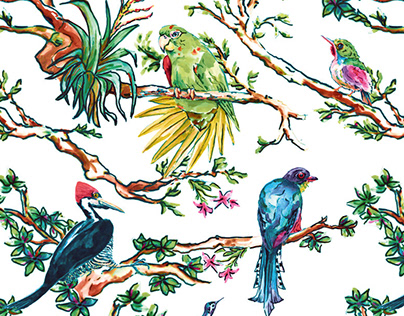 Pattern Design - Cuban Birds (Sketches)