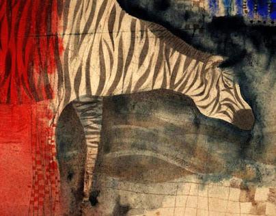 Zebras (2008)
