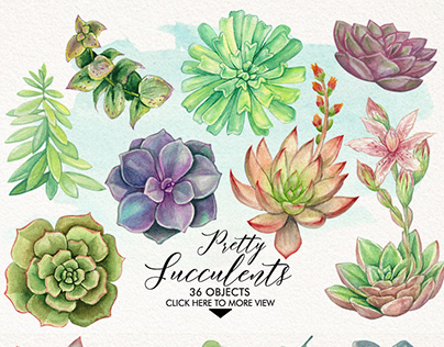 Watercolor Pretty Succulents