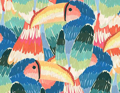 Farm - Tucanos pintados