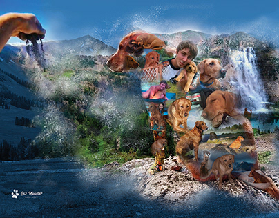 Digital Illustration Collage