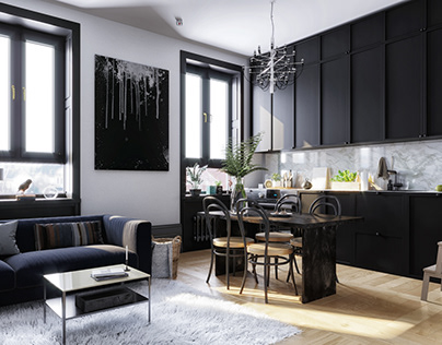 Modern Apartments Idea