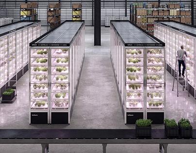 Infarm - Urban Farming Illustrations