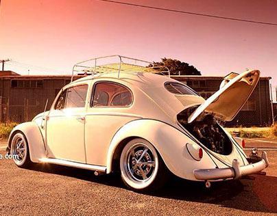 Beetle Owners Australia