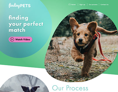 Finding Pets - mock-up web design practice