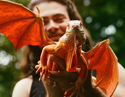 Dragon and Me