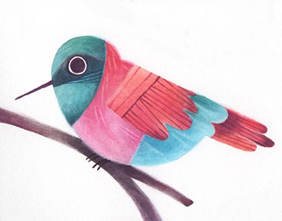 Animal Aphabet of Birds | Instagram challenge