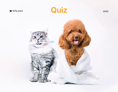 Quiz website for grooming studios, concept