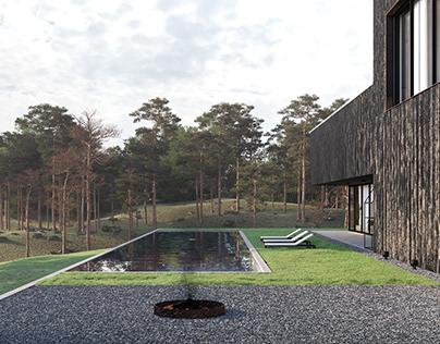the wooden house | .cxr