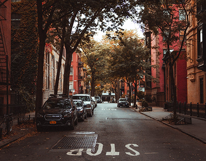 Autumn in Brooklyn