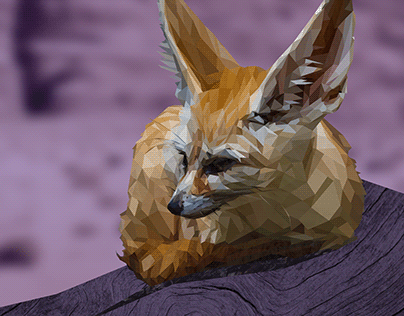 Naranja the Fennec Fox, 2020