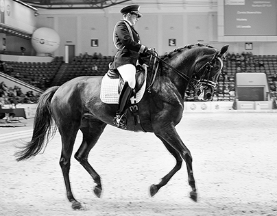 Equestrian competition Cavaliada
