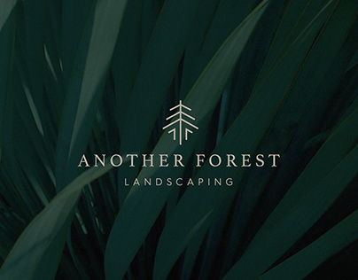 Another Forest Landscaping