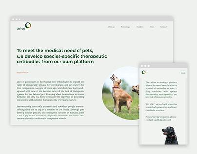 adivo --Responsive website design development