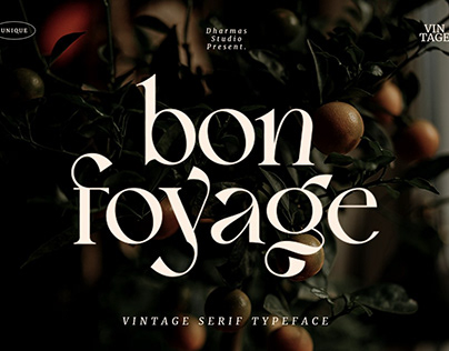 Bon Foyage - Vintage Modern Serif