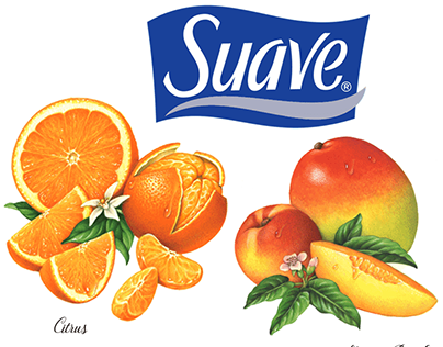 Illustrations for Suave Naturals Packaging.