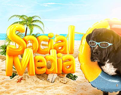Social Media - Vida Pets