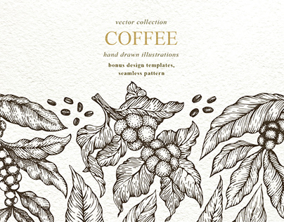Hand Drawn Coffee Vector Collection