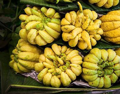 Sloka 74 - Buddha's Hand Citrus