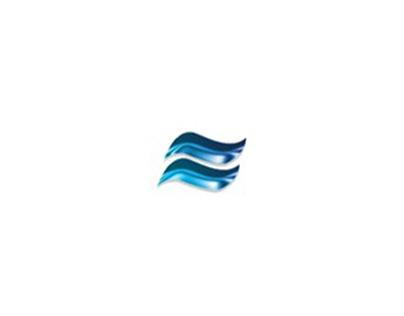 Logo + Animation