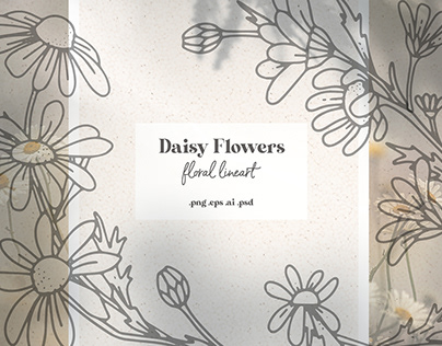 Daisy Flowers - Floral Line Art