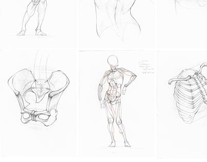 Drawings and Studies (2020-2021)