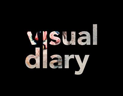 Visual Diary