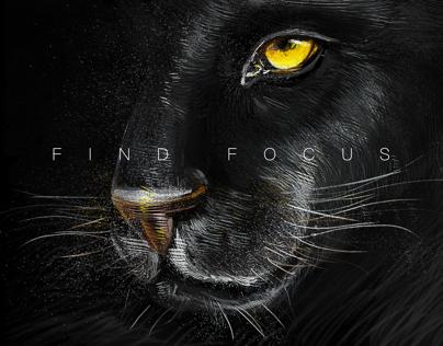 find focus