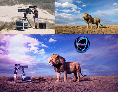 Lion & cameraman